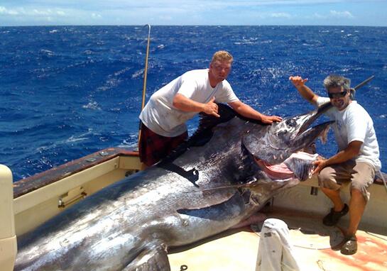 Big Game Fishing Big Island Hawaii