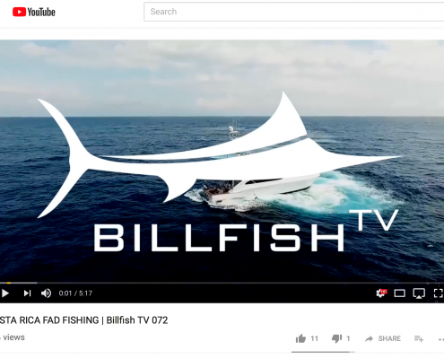 Learning to Fish Via Youtube?