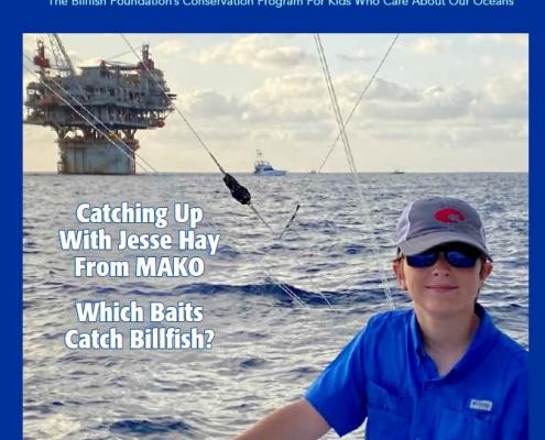 Spearfish Magazine #28 | Kids Corner | The Billfish Foundation