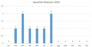 Spearfish releases month-by-month graph